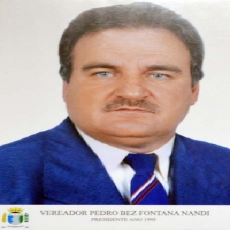 Pedro Bez Fontana Nandi